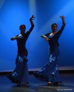 Night of Flamenco 2014