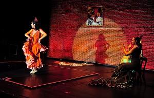 Flamenco034